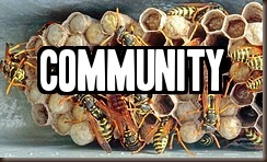Community by Ian Sane on flickr-text
